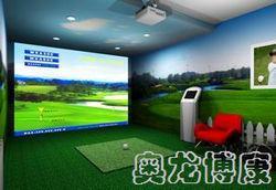 高尔夫模拟系统