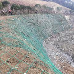 供应现货余姚山体边坡绿化主动网