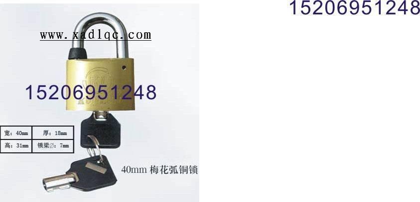 供应表箱铜锁