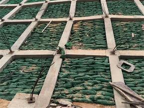 护坡生态袋,边坡防护绿化袋,河道生态护坡袋