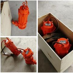 (新产品)高温污水泵|耐热潜污泵