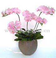 日本手工仿真花