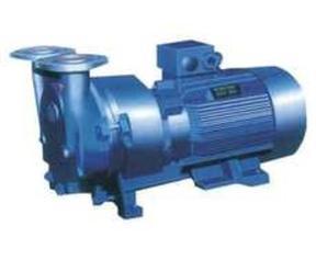 SKA2070小型直联水环真空泵