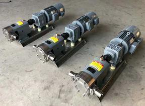 食品级转子泵 食品泵 凸轮转子泵-上海帮凡泵业