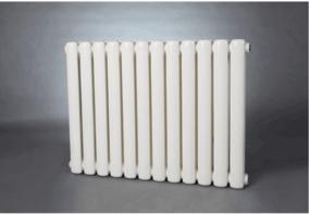 GZ206/600-1.0钢制柱型散热器