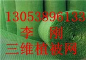 三维植被网(垫)价格