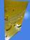 转盘防滑垫 转盘聚胺脂防滑垫 钻井平台防滑板ZP175