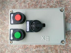 LBZ-A2K1G挂式机旁防爆操作柱