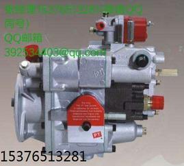 K1060-JY290轨道车发动机PT燃油泵总成3655215