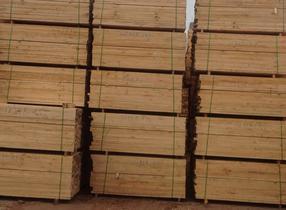 梧州建筑木方 松木方条 杉木方条 工地木方