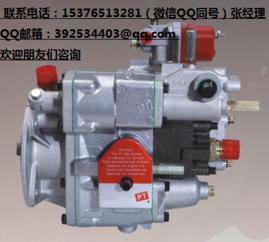 K1072WB250拌合机发动机PT燃油泵总成3655213