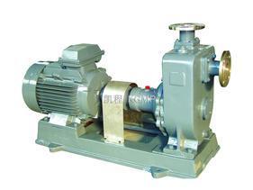 瓯北40ZX6.3-32型自吸式离心泵