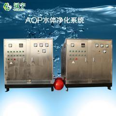 AOP氧化水体净化设备污水处理方案