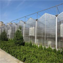 设计安装智能阳光板温室大棚