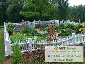 四川家庭农场菜园设计施工打造找尚鼎丰专业团队更放心!