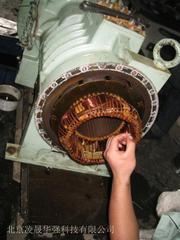 莱富康螺杆压缩机电机