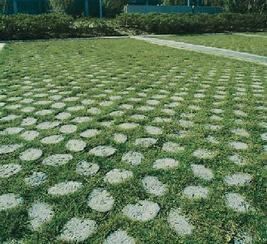 植草地坪高承载植草地坪/生态停车场/超级植草地坪/现浇植草地坪、植草地坪模具