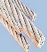 不锈钢耐磨304l无磁钢丝绳/晾衣架不锈钢包塑料钢丝绳