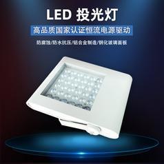 大功率LED投光灯 高亮户外防水防尘IP65投射灯 庭院户外工程用灯