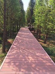 西安志诚塑木提供户外景区木塑地板栈道铺装,专业的安装施工厂家