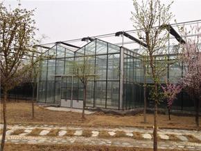 河南玻璃智能温室大棚