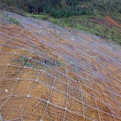 边坡防护网,落石边坡护网,主动边坡防护网