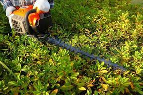 二冲程绿篱机、修剪机