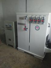 自来水厂专用消毒设备次氯酸钠发生器