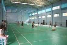 羽毛球场地板羽毛球场地板胶羽毛球场地专用地胶羽毛球地板
