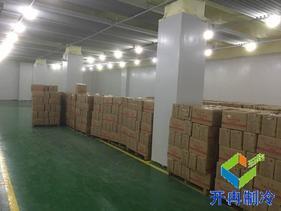 低温冷库5000吨建造报价,生鲜冷冻仓储安装设计