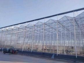农业生态园区玻璃生态餐厅