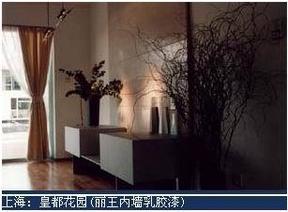 丽王内墙乳胶漆