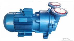 2BV/2SK型水环真空泵