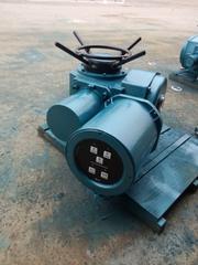 电动截止阀DZW30-24-A00-WK执行机构