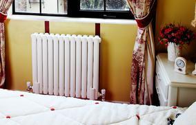 鲁本斯钢制暖气片散热器塞尚2550大水道