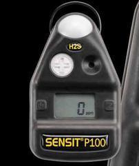 美国杰恩SSP100单一(氧气)检测仪
