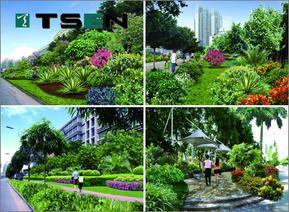 市政道路景观规划设计|市政公园规划|天成国际景观