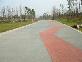 公园彩色艺术装饰混凝土系统