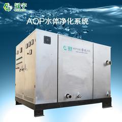 黑臭水体预处理专用设备AOP水体净化设备