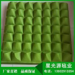 园林立体绿化墙毛毡种植毯