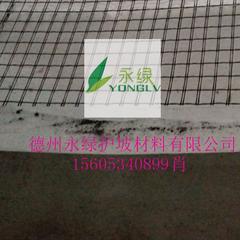 植被垫_植被垫价格_优质植被垫批发/采购 - 永绿护坡