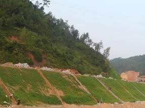 边坡防护网 客土喷播 山体绿化 边坡绿化施工