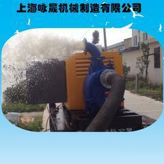 柴油机转子泵