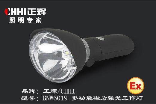 多功能强光巡检电筒BNW6019,强光电同,防爆手电筒