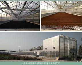 太阳能皮革污泥干化处理系统