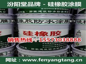 硅橡胶涂膜-汾阳堂-