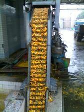 捞渣机/果汁污水处理设备