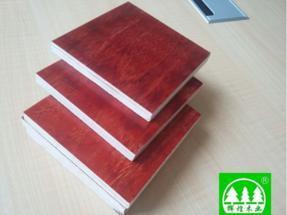 贵州建筑模板(九层板)工程模板