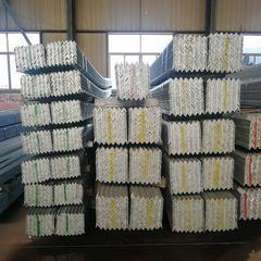 供应天津镀锌角钢 热镀锌角钢接地极 热镀锌角钢价格 厂价直销