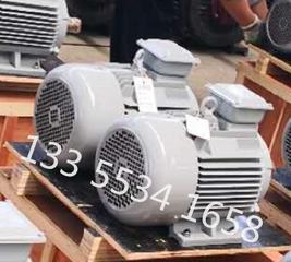 电动机上带接线盒的电机 10千瓦风力发电机
